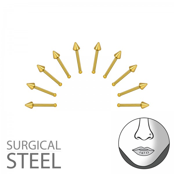 Labret & Barbell NSN-02-GD/36021
